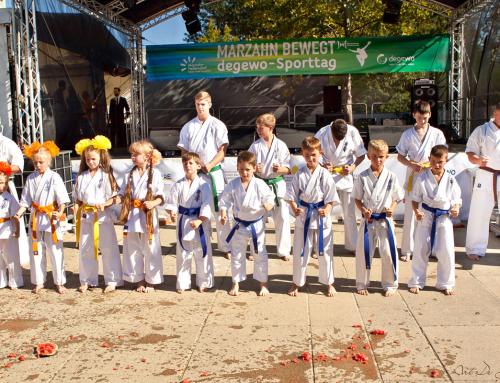 Karatevorführung  Straßenfest